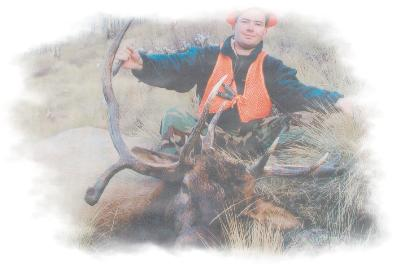 Trophy Wilderness Elk Hunts from drop or base camps-Timberline Outfitters & Guide Service, Inc.